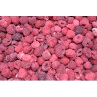 Buy cheap IQF Organic raspberry from wholesalers