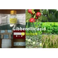 Buy cheap Plant growth regulator / Gibberellic Acid (GA-3) /  High quality/ Good prices/ Terrastek from wholesalers