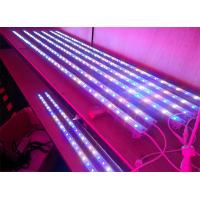 Buy cheap Low Consumption Blue 450 - 460nm E27 9W Par38 LED Reef Aquarium Lighting bar For Reef  from wholesalers