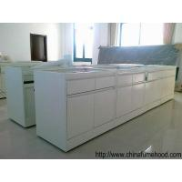 Buy cheap High Standard Wall Mounted Bench With Lab Sinks And Faucets  For Laboratory Furniture from wholesalers