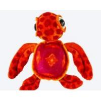 Buy cheap Big Eyes Turtle from wholesalers