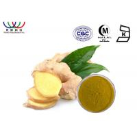 Buy cheap Natural Chinese Ginger Root Extract 20 ~ 40% Gingerols improves blood circulation from wholesalers