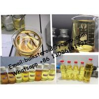 Buy cheap Test-P 100 Customized Semi Finished Oil Based Liquid Testosterone Propionate 100mg/ml from wholesalers