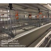 Buy cheap Low Carbon Steel Material Automatic Battery Chicken Layer Cage For 96 Birds Sale from wholesalers