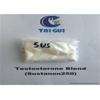 Buy cheap Testosterone Blend Sustanon250 Raw Steroid Powders Injectable Steroid 300mg/ml from wholesalers