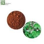 Buy cheap Kosher certificate of Chinese Male Herbal Sex Enhancement Epimedium P.E. from wholesalers