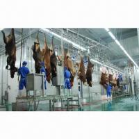 Buy cheap Cattle Cow Slaughtering Line, 5 to 120 Animals/Hour Production Capacity from wholesalers