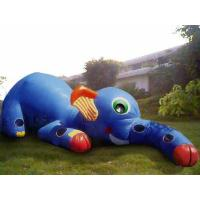 Buy cheap Inflatable Animal Tunnel, Inflatable Elephant Trunk Tunnel Games from wholesalers