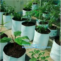 Buy cheap Drain Growing Bags-White Color Grow Bags-100%Virgin Raw PE Planter Bags -25Gallon 150Microns Thickness Planting Bag, PAC from wholesalers