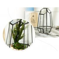 China Micro Landscape House Glass Plant Terrarium For Plants Flower Household on sale