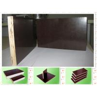 Buy cheap Eucalyptus core Concrete Formwork plywood for building usage 12mm - 21mm , Eco friendly from wholesalers