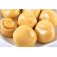 Buy cheap 200g High Grade Canned Champignon Mushroom , Pickled Mushrooms Canning from wholesalers