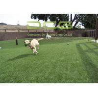 Dog Friendly Artificial Grass For Pets Anti UV Excellent Water Permeability