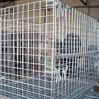 Buy cheap Wire Mesh Containers from wholesalers