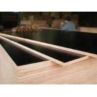 Buy cheap Brand new 1250X2500mm construction wood concrete formwork plywood for Belgium from wholesalers