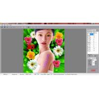 Buy cheap PSDTO3D101 Lenticular Software for 3D Photo Design from wholesalers