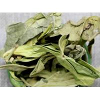Buy cheap Sauropi Folium Sauropus changianus leaves dragon's tongue rostrate sauropus leaf Long li ye from wholesalers