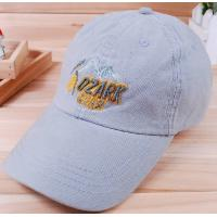 Buy cheap custom promotional baseball sports caps&golf  hats  3D  embroidery from wholesalers
