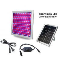Buy cheap DC24V Solar LED Grow Light 58W Dimming Red+Blue Full spectrum for Vegetable and product