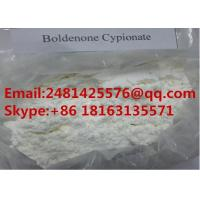 Buy cheap High Purity Anabolic Androgenic Steroids Cypionate Boldenone Powder CAS 106505-90-2 from wholesalers