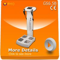 Buy cheap GS6.5B human fat analyser/ female scale analyzer/body composition analyser from wholesalers