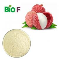 Buy cheap Organic Freeze Dried Fruit Powder Lychee Powder With Vitamins Solvent Extraction from wholesalers