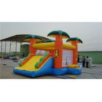 Buy cheap Backyard Water Slide Bounce House , Popular Inflatable Castle Bounce House from wholesalers