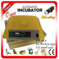 Buy cheap Newest EW-48A automatic high quality chicken incubator / mini quail egg incubator high hatching rate from wholesalers