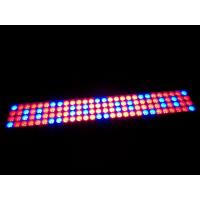 Buy cheap 20W 40W 60W 80W 100W LED Grow Light Hydroponic Plant – Growth Lighting product