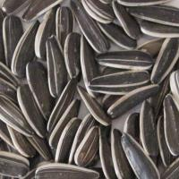 Buy cheap sunflower seeds from wholesalers