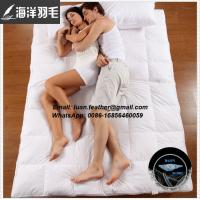 Buy cheap Hotel Use washed White Goose Duck Down Feather Filling Soft Bed Mattress Pad from wholesalers