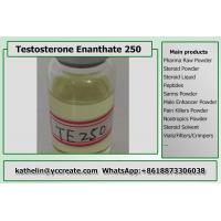 Buy cheap Semi Finished Oil Based Steroids Testosterone Enanthate 250mg/ml Test E 250 Test E from wholesalers