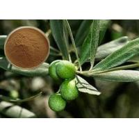 Buy cheap CAS 32619-42-4 Cosmetic Raw Materials Olive Leaf Extract Powder For Digestive System from wholesalers