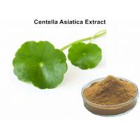 Centella Asiatica Leaf Extract Asiaticoside Promoting Healing , Entella Asiatica Extract Skin Care