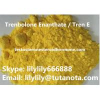 Buy cheap Yellow Natural Anabolic Steroid Trenbolone Enanthate / Tren E Bodybuilding powder from wholesalers