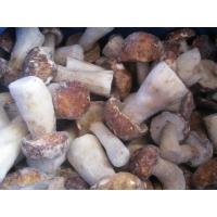 Buy cheap Frozen Mushroom Boletus Edulis Whloe/ Cube from wholesalers