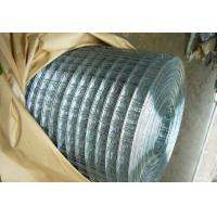 Bright G.I. Welded Wire Mesh