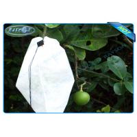 Buy cheap Nonwoven Agiculture Plant Grow Bags For Fruit Growth and Protection , Potato Grow Bags from wholesalers