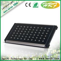 Buy cheap 120w led grow light 12 bands led plant lamp for greenhouse from wholesalers