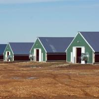 Buy cheap China Steel Structure Prefab Poultry House Poultry Farming from wholesalers