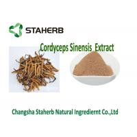 Buy cheap Cordyceps Concentrated Plant Extract , Polysaccharide Cordyceps Sinensis Extract from wholesalers