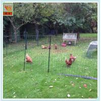 Buy cheap Chicken Mesh/ Plastic Chicken Mesh/  Poultry Netting/ Mesh 2cm*2cm/ PP/ Transparent from wholesalers