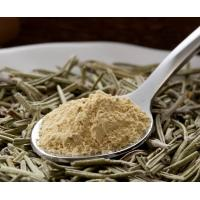 Buy cheap Rosemary Extract from wholesalers