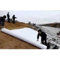 Buy cheap Polyester fabric geotextile /Polyester Nonwoven Geotextile,Polyester fabric geotextile /Polyester Nonwoven Geotextile from wholesalers