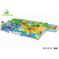 Commercal Centers Indoor Baby Gym , Various Theme Indoor Play Structures