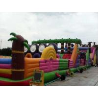 Buy cheap Multifucaional Giant Inflatable Amusement Park Outdoor PVC Jumping Bouncy Castle from wholesalers
