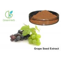 Buy cheap Healthy Care Pure Grapeseed Extract 95% Polyphenols Anti - Oxidant For Skin from wholesalers
