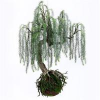 Buy cheap Q117-9 Realistic Artificial Plants Home Decor Plants Weeping Willow With Plastic Base product