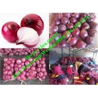 China Hot Sell Chinese Fresh Red Onion (3-5cm,10kg/Mesh bag Package) on sale