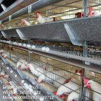 Buy cheap H type galvanized egg chicken cage,battery hens chicken cage for Philippines farms from wholesalers